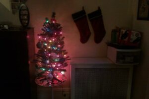Chelsey stockings Nov